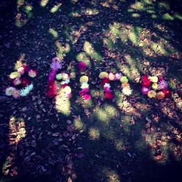 words in flowers - shine