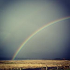 rainbow breakfast - day start