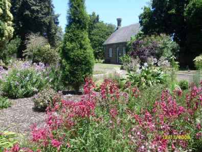 Rachel Dawson's Photos of gardens