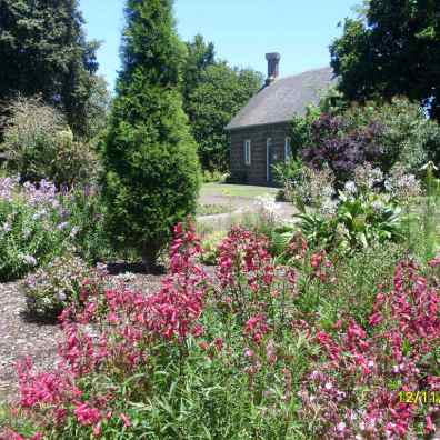 Rachel Dawson's Photos of gardens