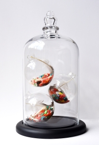 Carmel Wallace_Ring-a-ring-a-rosie #2_Beach plastic, Shearwater bones & feathers, glass & wood vitrine_31 x 18.5cm_low res